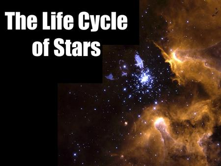 The Life Cycle of Stars. If you were preparing a timeline of your life, what would you include?