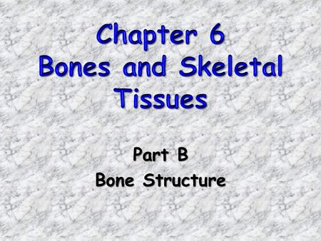 Part B Bone Structure. Bones Bones are organs!Bones are organs! –Contains various types of tissues Osseous tissue (dominates) Nervous tissue Cartilage.