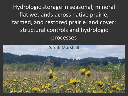 Hydrologic storage in seasonal, mineral flat wetlands across native prairie, farmed, and restored prairie land cover: structural controls and hydrologic.