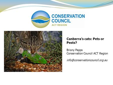Canberra's cats: Pets or Pests? Briony Papps Conservation Council ACT Region