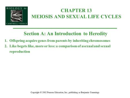 CHAPTER 13 MEIOSIS AND SEXUAL LIFE CYCLES Copyright © 2002 Pearson Education, Inc., publishing as Benjamin Cummings Section A: An Introduction to Heredity.