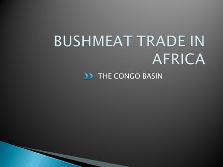 THE CONGO BASIN. In Africa, forest is often referred to as 'the bush', thus wildlife and the meat derived from it is referred to as 'bushmeat'. What is.