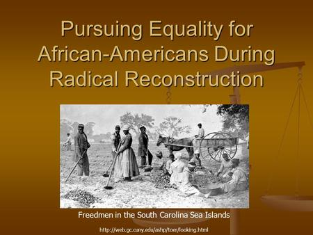 Pursuing Equality for African-Americans During Radical Reconstruction Freedmen in the South Carolina Sea Islands