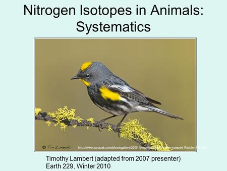 Nitrogen Isotopes in Animals: Systematics Timothy Lambert (adapted from 2007 presenter) Earth 229, Winter 2010