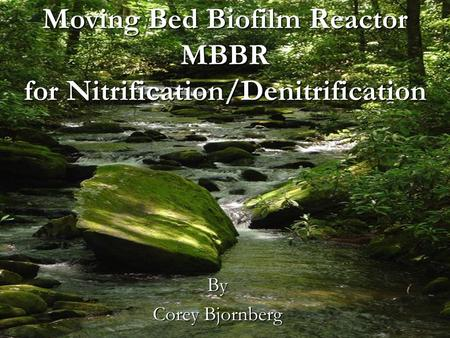 Moving Bed Biofilm Reactor MBBR for Nitrification/Denitrification