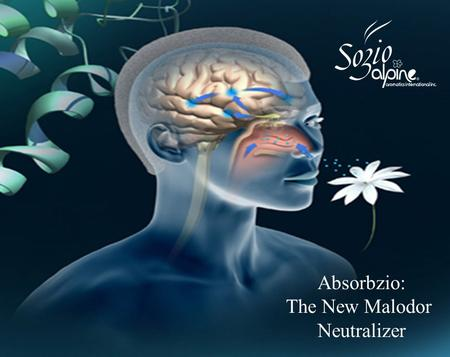 Absorbzio: The New Malodor