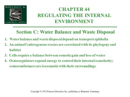 CHAPTER 44 REGULATING THE INTERNAL ENVIRONMENT Copyright © 2002 Pearson Education, Inc., publishing as Benjamin Cummings Section C: Water Balance and Waste.
