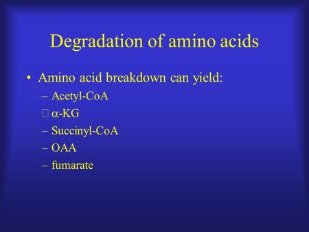 Degradation of amino acids Amino acid breakdown can yield: –Acetyl-CoA –  -KG –Succinyl-CoA –OAA –fumarate.