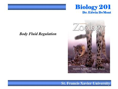 Biology 201 Dr. Edwin DeMont St. Francis Xavier University Body Fluid Regulation.