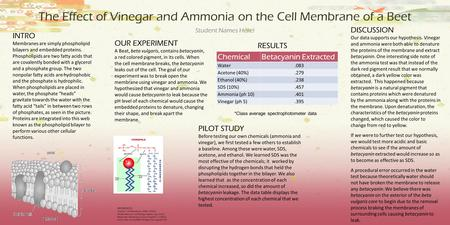 The Effect of Vinegar and Ammonia on the Cell Membrane of a Beet