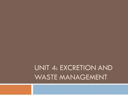 UNIT 4: EXCRETION AND WASTE MANAGEMENT. Excretion and Waste Management  What would happen if you never threw out your garbage or leftover food?  Be.