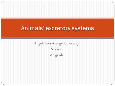Angela Inés Arango Echeverry Science 7th grade Animals' excretory systems.