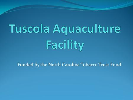 Funded by the North Carolina Tobacco Trust Fund. Thanks for making this possible!