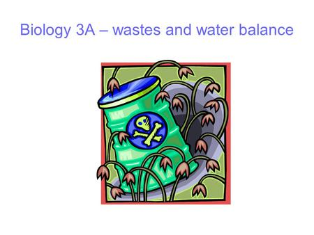 Biology 3A – wastes and water balance. Organisms need nutrients Nutrients provide Energy for cellular and body activity eg movement, growth, active transport,