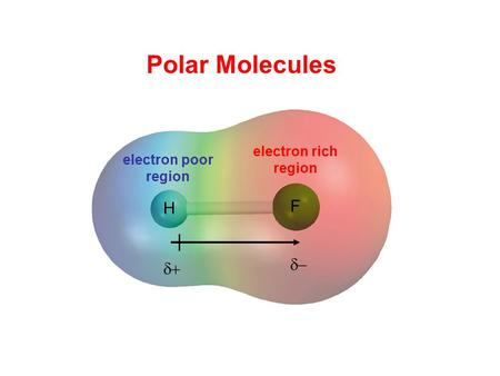 Polar Molecules H F electron rich region electron poor region d+ d-