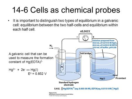 14-6 Cells as chemical probes It is important to distinguish two types of equilibrium in a galvanic cell: equilibrium between the two half-cells and equilibrium.