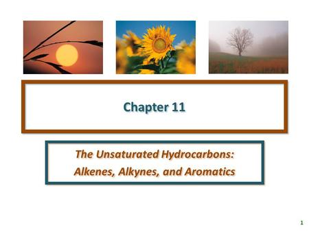 1 Chapter 11 The Unsaturated Hydrocarbons: Alkenes, Alkynes, and Aromatics The Unsaturated Hydrocarbons: Alkenes, Alkynes, and Aromatics.