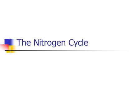 The Nitrogen Cycle. Nitrogen The most abundant element in earth's atmosphere = approximately 78%. Used to carry out many life functions. Especially important.