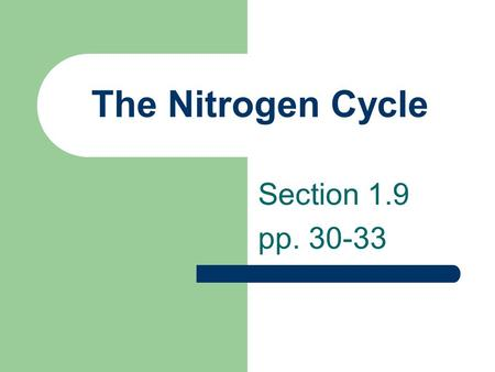 The Nitrogen Cycle Section 1.9 pp. 30-33. Nitrogen Cycle Nitrogen is essential to living things for the production of proteins and DNA which are used.