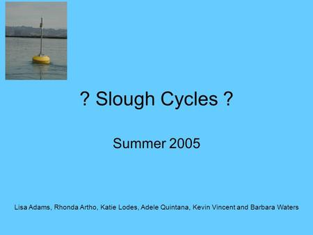 ? Slough Cycles ? Summer 2005 Lisa Adams, Rhonda Artho, Katie Lodes, Adele Quintana, Kevin Vincent and Barbara Waters.