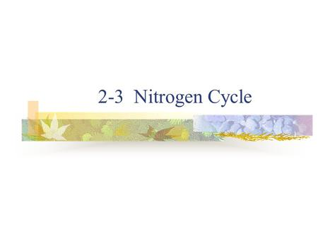 2-3 Nitrogen Cycle. Nitrogen Cycle Nitrogen – production of proteins and nucleic acids 79% of atmosphere – N 2 gas Most plants and animals cannot capture.