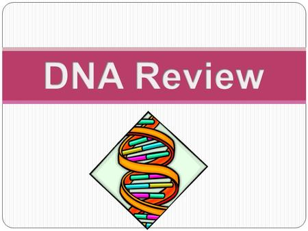 What does DNA stand for? Deoxyribonucleic Acid.