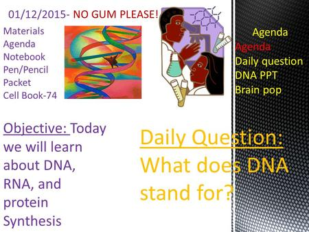 Objective: Today we will learn about DNA, RNA, and protein Synthesis Materials Agenda Notebook Pen/Pencil Packet Cell Book-74 01/12/2015- NO GUM PLEASE!