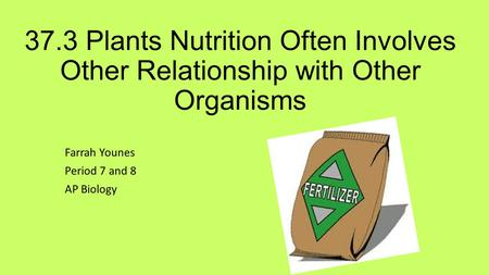 37.3 Plants Nutrition Often Involves Other Relationship with Other Organisms Farrah Younes Period 7 and 8 AP Biology.