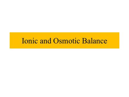 Ionic and Osmotic Balance. Ion & Water Balance Kidneys are main organs of ion & water balance Gills, skin, digestive mucosa all help with ion and water.