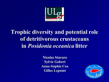 Trophic diversity and potential role of detritivorous crustaceans in Posidonia oceanica litter Nicolas Sturaro Sylvie Gobert Anne-Sophie Cox Gilles Lepoint.