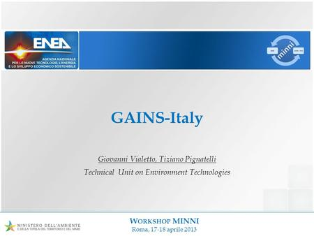 W ORKSHOP MINNI Roma, 17-18 aprile 2013 GAINS-Italy Giovanni Vialetto, Tiziano Pignatelli Technical Unit on Environment Technologies.
