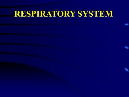 RESPIRATORY SYSTEM. I. Respiratory system - General purpose and structure 1. AIR CONDUCTING PORTION a. Nasal cavity, oral cavity b. Nasopharynx, oropharynx,