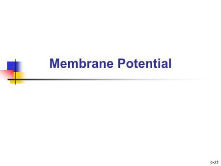 Membrane Potential 6-35. Membrane Potential  Is difference in charge across membranes  Results in part from presence of large anions being trapped inside.