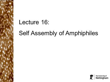 Lecture 16: Self Assembly of Amphiphiles. What did we cover in the last lecture? Aggregates will form when the free energy per molecule/particle inside.