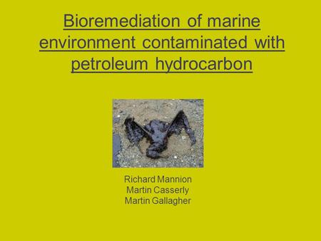 Bioremediation of marine environment contaminated with petroleum hydrocarbon Richard Mannion Martin Casserly Martin Gallagher.