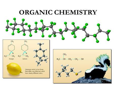 organic chemistry aldehydes and ketones pdf