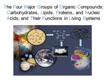 The Four Major Groups of Organic Compounds: Carbohydrates, Lipids, Proteins, and Nucleic Acids; and Their Functions in Living Systems.