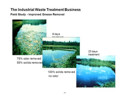 Field Study - Improved Grease Removal The Industrial Waste Treatment Business 44 75% odor removed 55% solids removed 8 days treatment 100% solids removed.