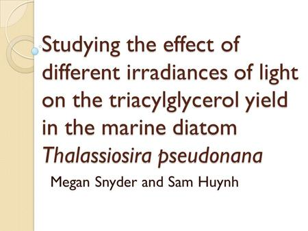 Studying the effect of different irradiances of light on the triacylglycerol yield in the marine diatom Thalassiosira pseudonana Megan Snyder and Sam Huynh.