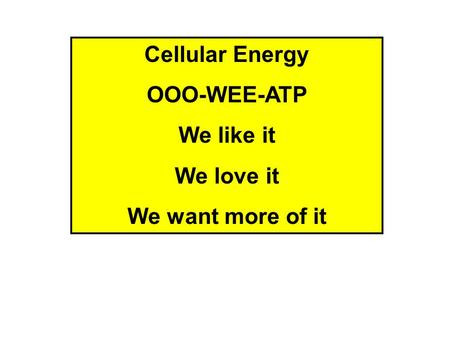 Cellular Energy OOO-WEE-ATP We like it We love it We want more of it.