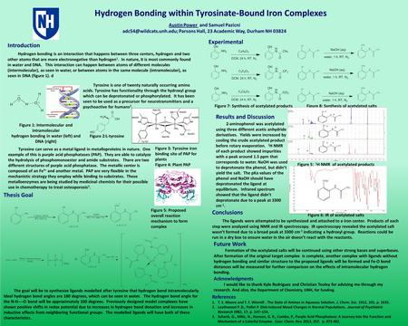 Hydrogen Bonding within Tyrosinate-Bound Iron Complexes Acknowledgments I would like to thank Kyle Rodriguez and Christian Tooley for advising me through.