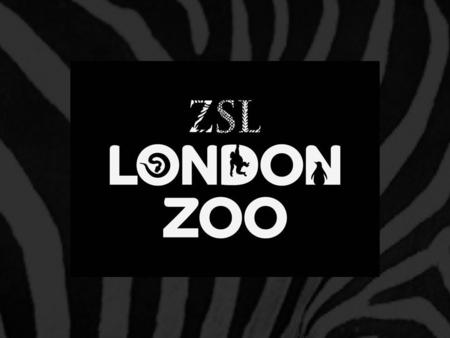 Your day at ZSL London Zoo Find out what to expect from a day at the Zoo Think about how you will make the day enjoyable for yourself, others and the.