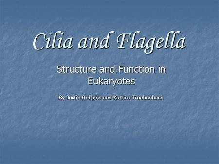 Cilia and Flagella Structure and Function in Eukaryotes By Justin Robbins and Katrina Truebenbach.