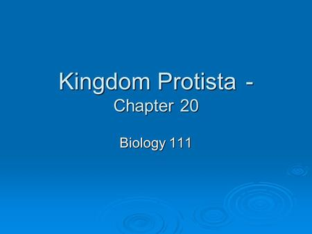 Kingdom Protista - Chapter 20