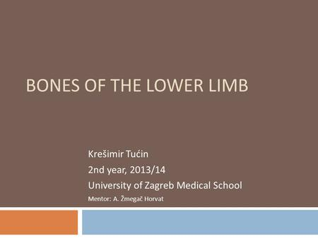 BONES OF THE LOWER LIMB Krešimir Tućin 2nd year, 2013/14 University of Zagreb Medical School Mentor: A. Žmegač Horvat.