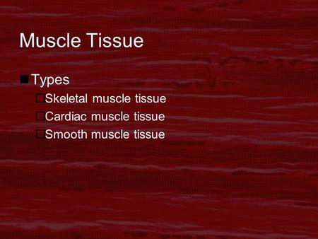 Muscle Tissue Types  Skeletal muscle tissue  Cardiac muscle tissue  Smooth muscle tissue.