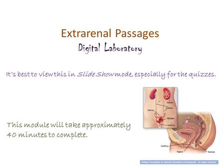 Extrarenal Passages Digital Laboratory It's best to view this in Slide Show mode, especially for the quizzes. This module will take approximately 40 minutes.
