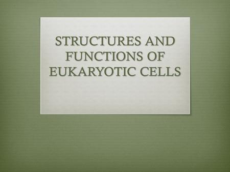 STRUCTURES AND FUNCTIONS OF EUKARYOTIC CELLS. Recall: The kingdoms fungi, protista, plantae and animalia are all composed of eukaryotic cells Similarities: