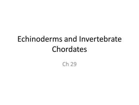 Echinoderms and Invertebrate Chordates Ch 29. Echinodermata Endoskeleton, radial symmetry, simple nervous system, varied nutrition, water vascular system.