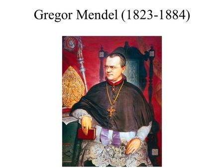 Gregor Mendel (1823-1884) DNA (gene) mRNA Protein Transcription RNA processing (splicing etc) Translation Folding Post translational modifications Peptides/amino.